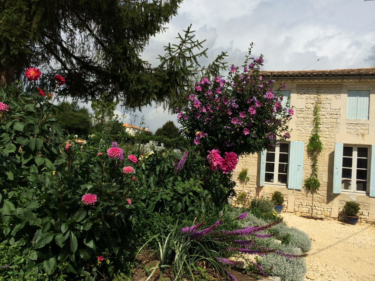 Renovation Maison La Rochelle the french country house – renovations – painting holidays